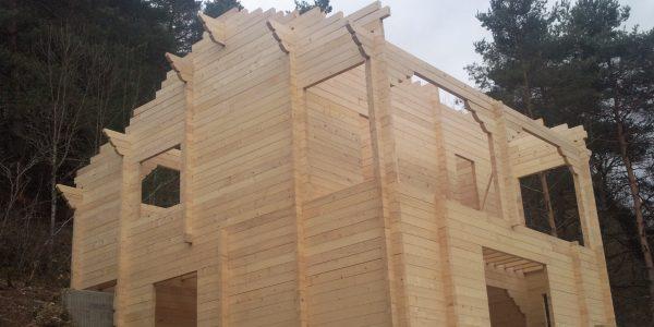 Case lemn chertate 2